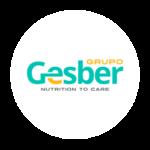 gesber-logoo-1